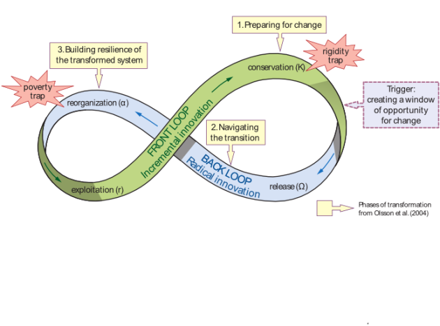 Panarchic cycle