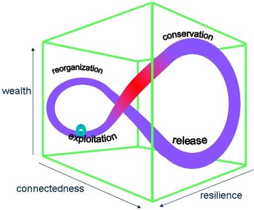 Panarchy diagram